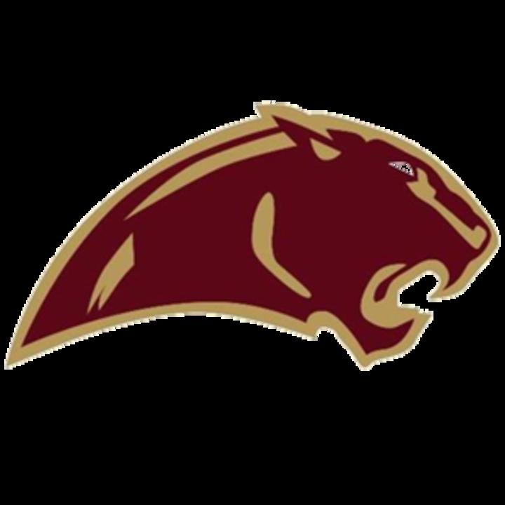 LeRoy High School mascot