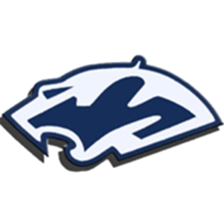 Plainfield South High School mascot