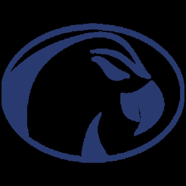 Prairie Central High School mascot