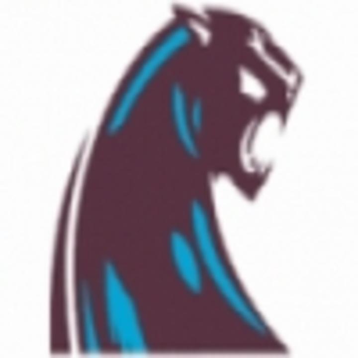 Hancock High School mascot