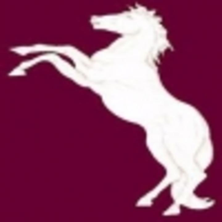 Bladensburg High School mascot