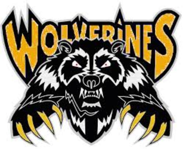 West Bend-Mallard High School mascot