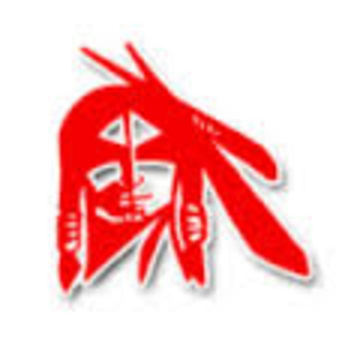 Pocahontas Area/L-M Co-op mascot
