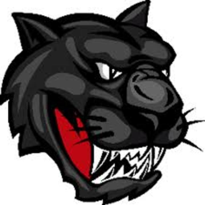 Riceville High School mascot