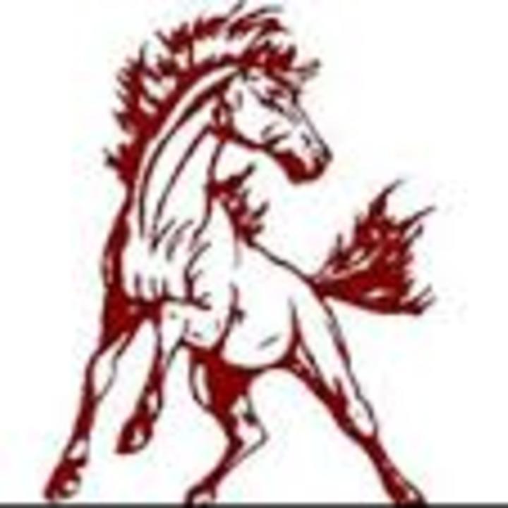 Shenandoah High School mascot