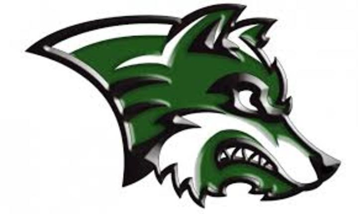 IKM-Manning High School mascot