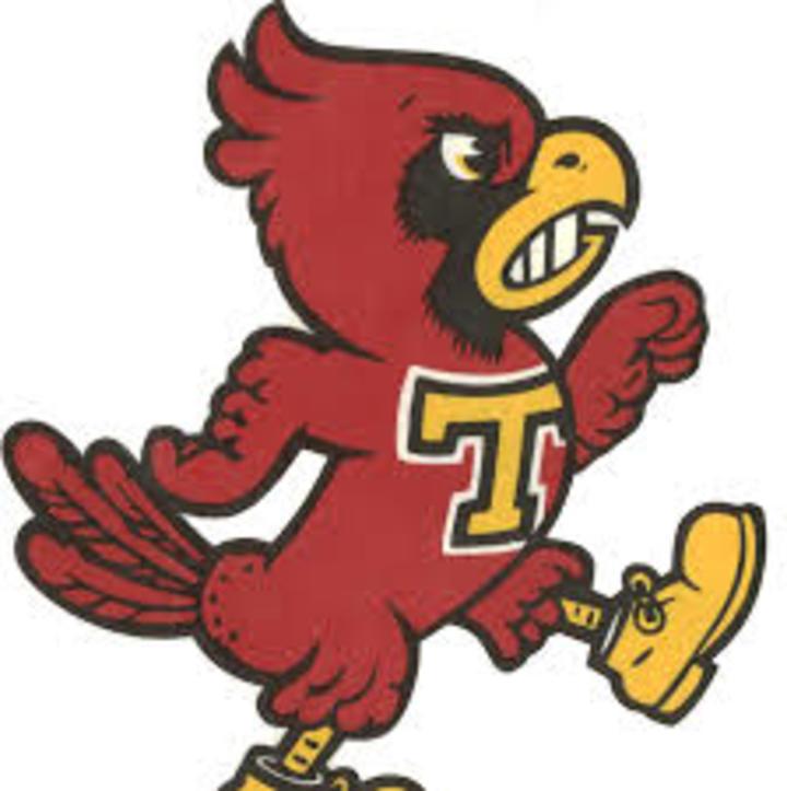 Treynor High School mascot