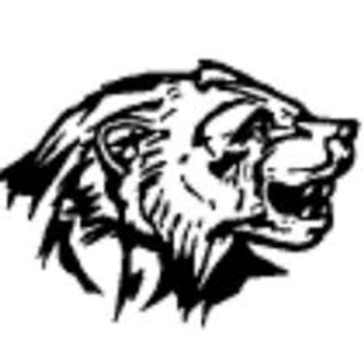 South O'Brien High School mascot