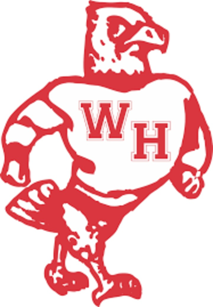 West Hancock High School mascot