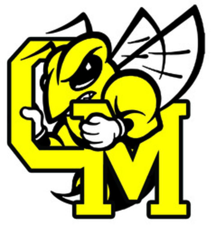 Great Mills High School mascot