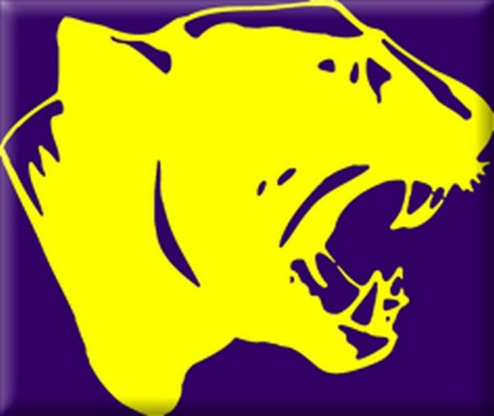 Logan-Magnolia High School mascot