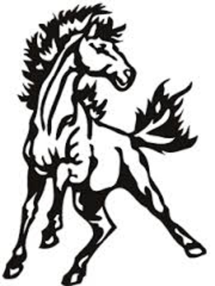 Davis County High School mascot