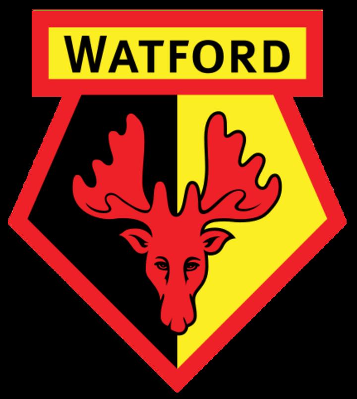 Watford FC mascot
