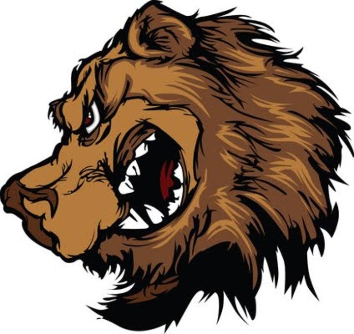 English Valleys High School mascot