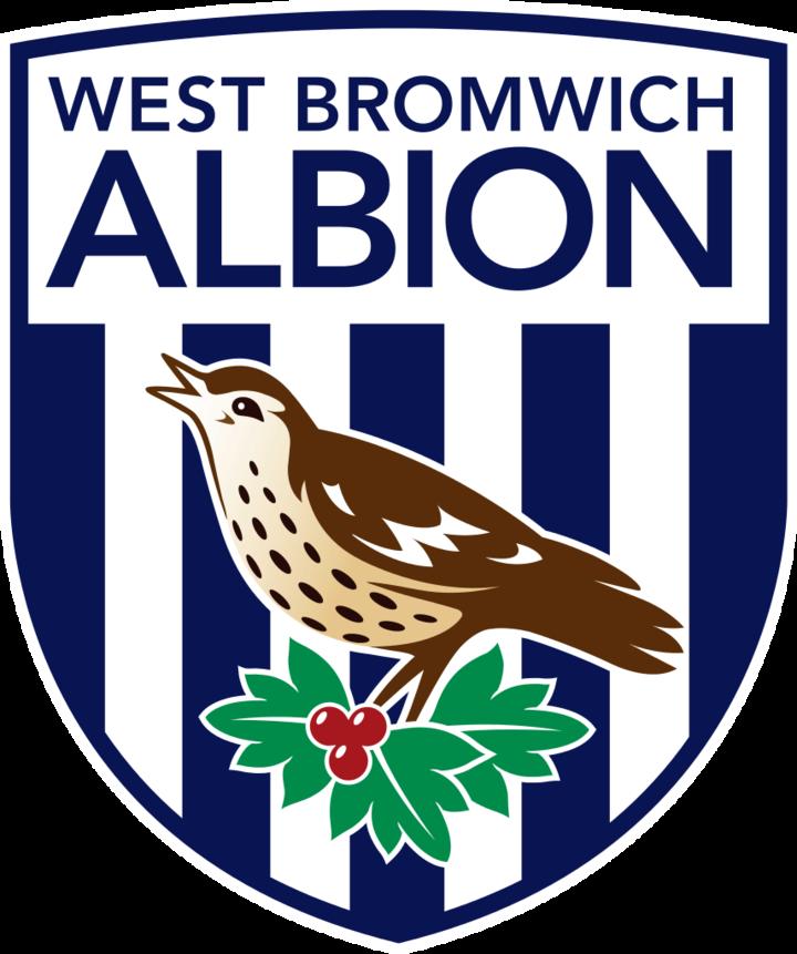 West Bromwich Albion FC mascot