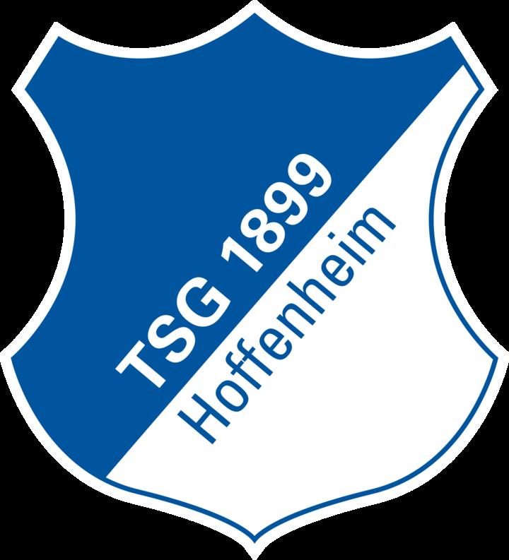 Turn- und Sportgemeinschaft 1899 Hoffenheim mascot