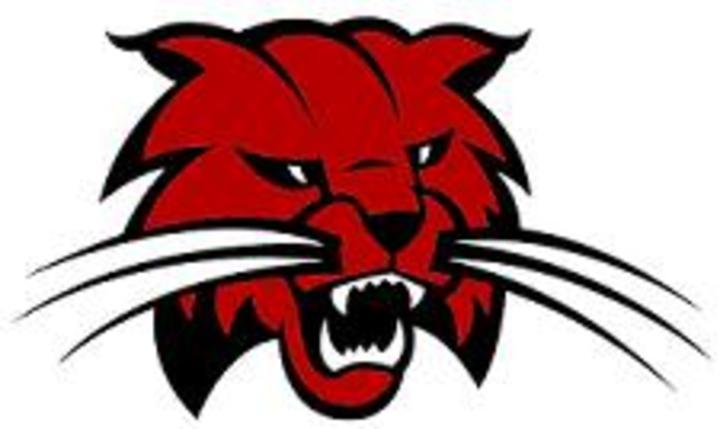 Meridian High School mascot