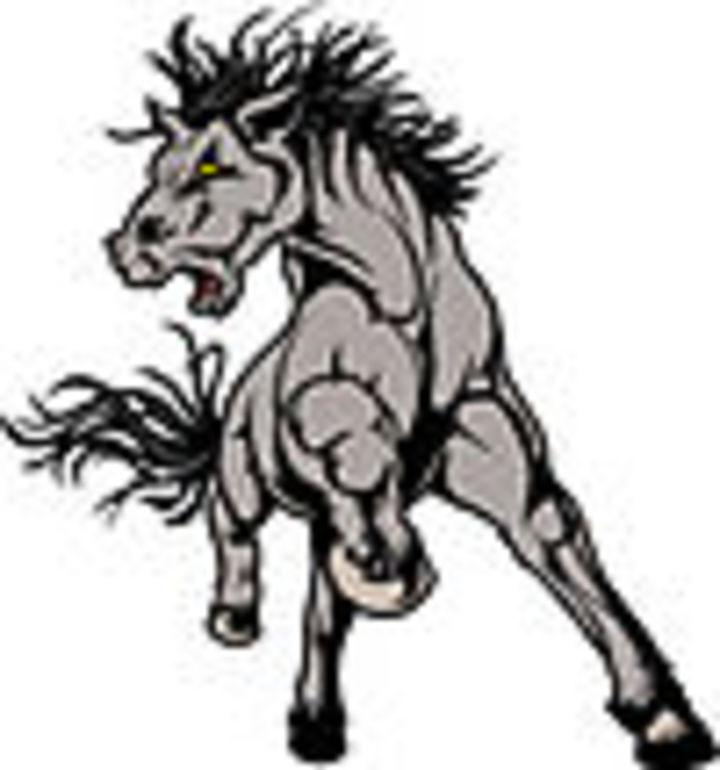 Unity High School mascot
