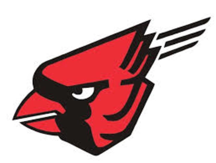Forreston High School mascot