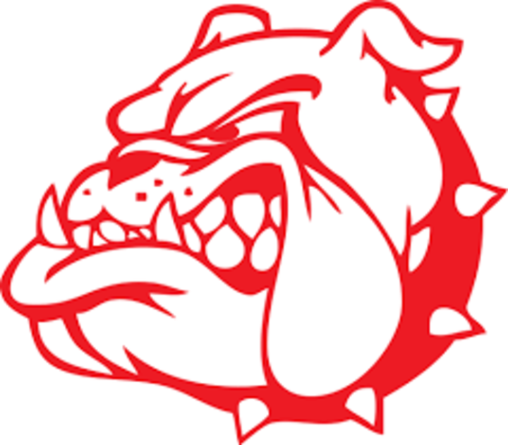 St Anthony High School mascot