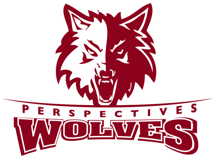 Perspectives Math & Science Academy mascot