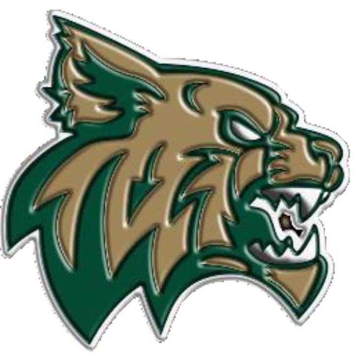 Chisago Lakes High School mascot