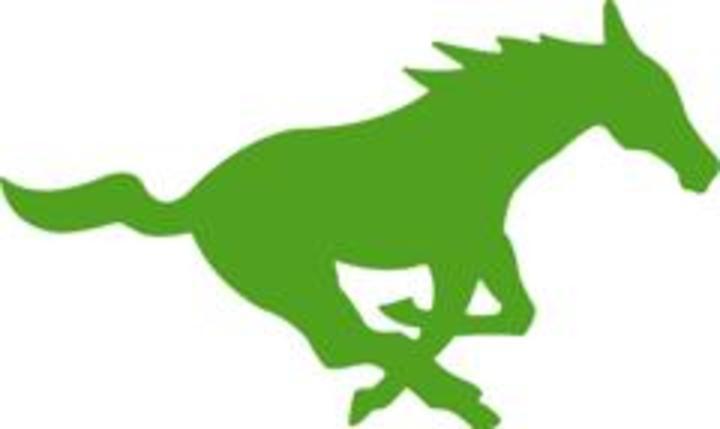 Intrinsic Charter Schools mascot