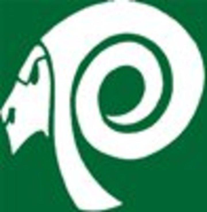 Parkside High School mascot