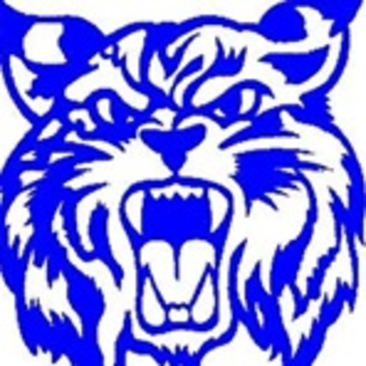 Northwestern High School mascot