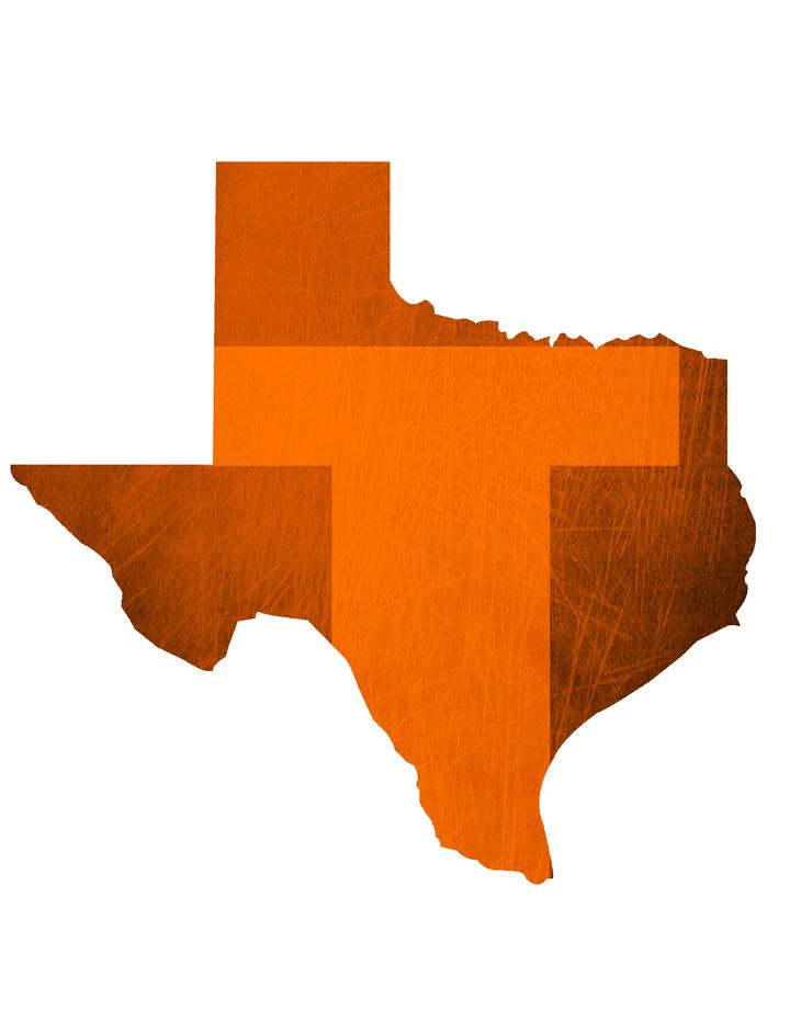 Team Texas - Austin mascot