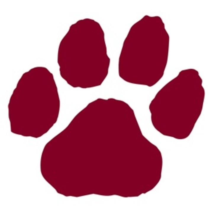 East Juniata High School mascot