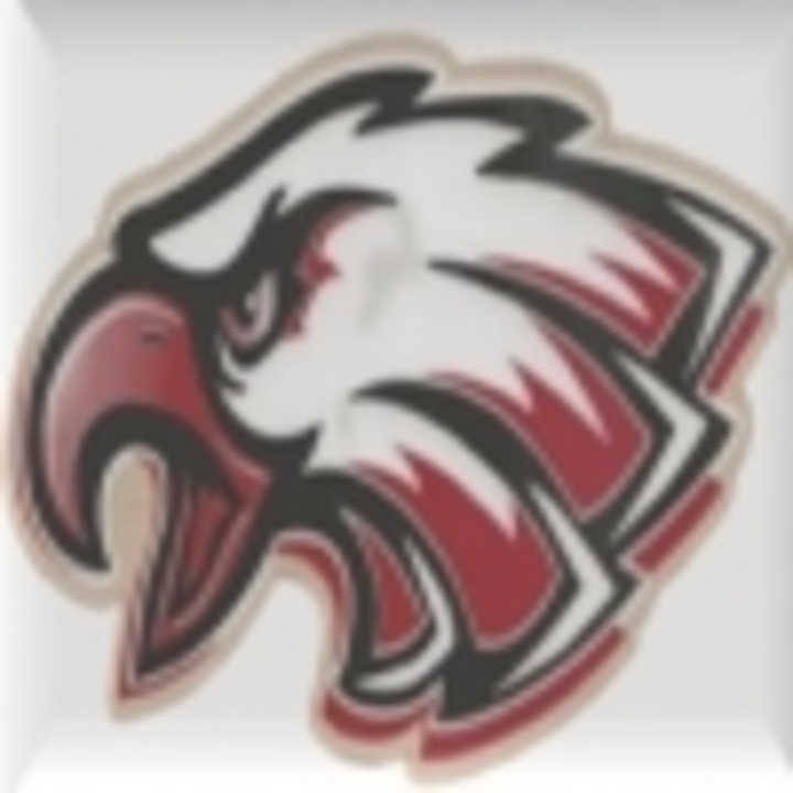 Bohemia Manor High School mascot