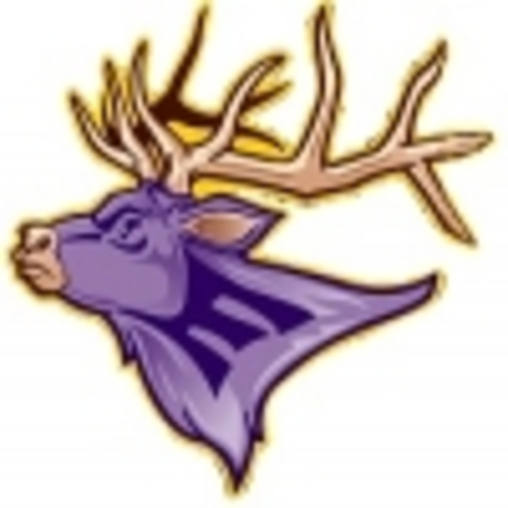 Elkton High School mascot