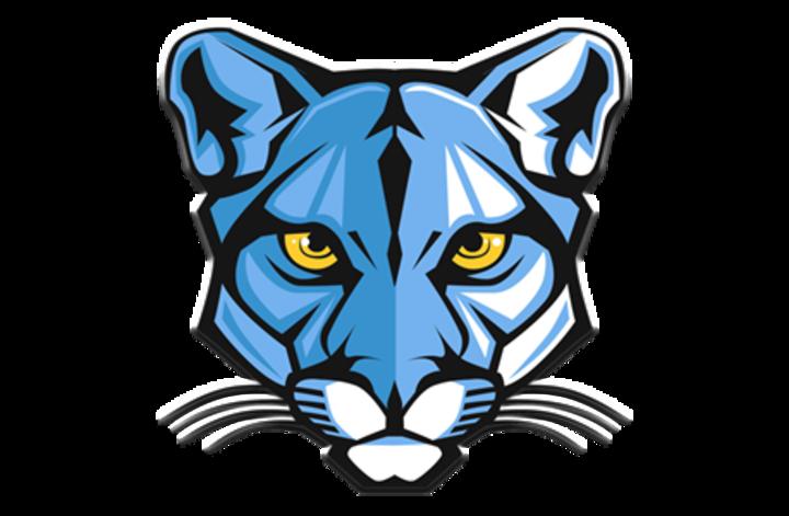 Lewistown Area High School mascot