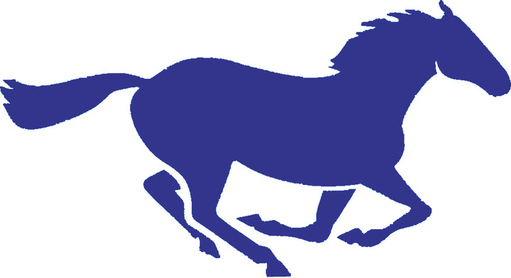 Ridgeview High School mascot