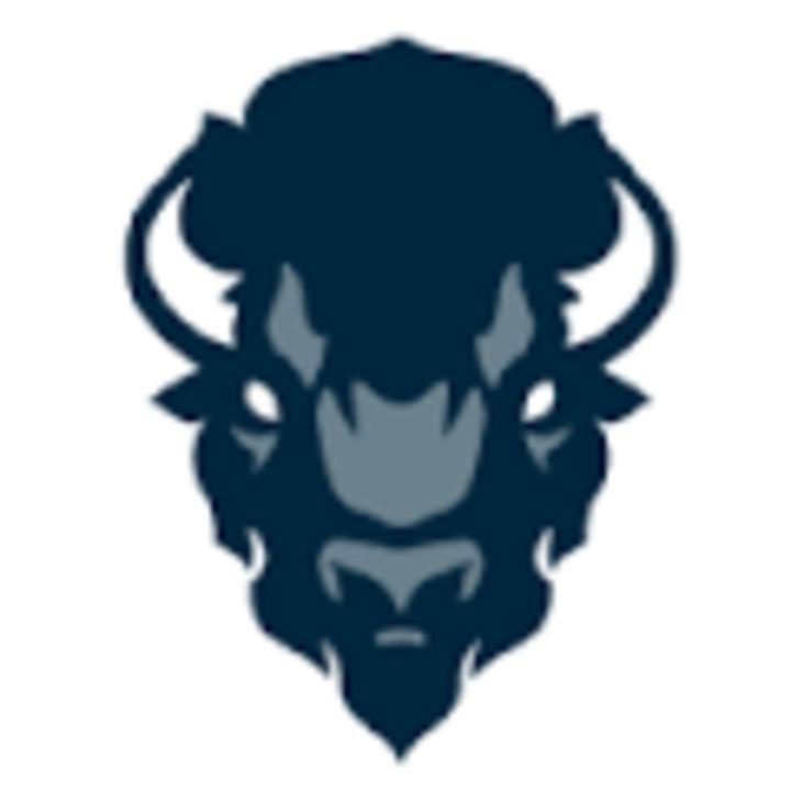 Howard University mascot