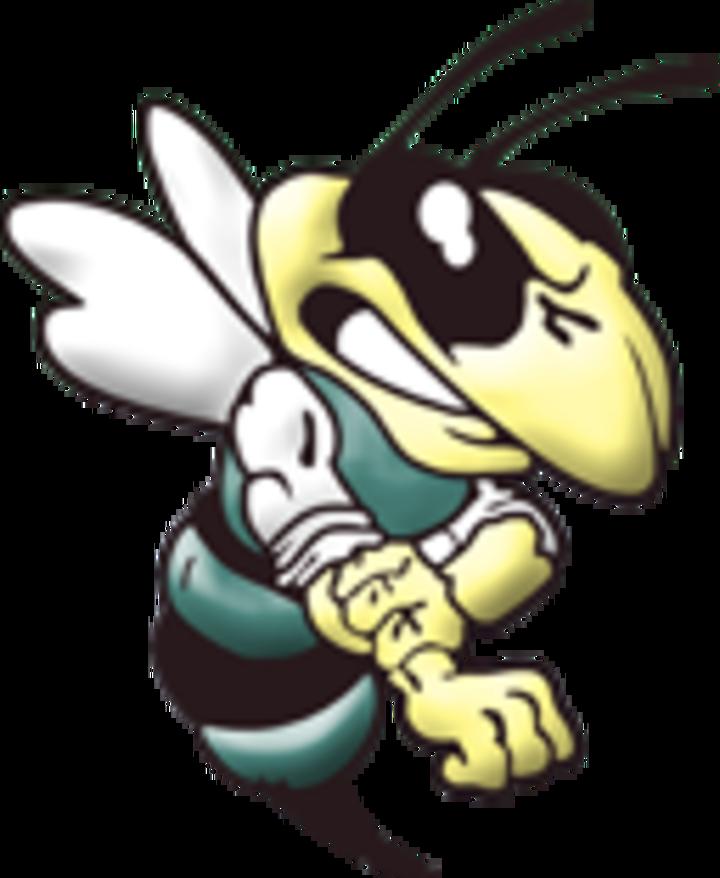 Wellsboro High School mascot