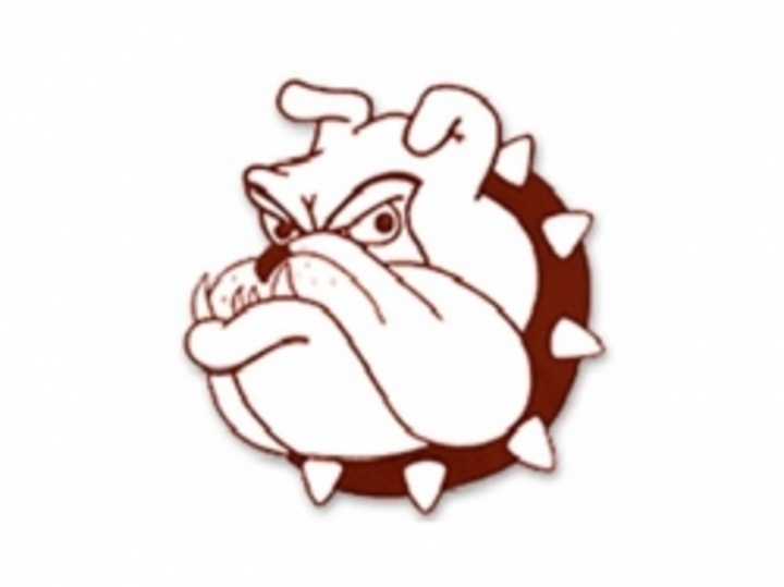 Big Spring High School mascot