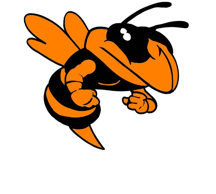 Orange County High School mascot