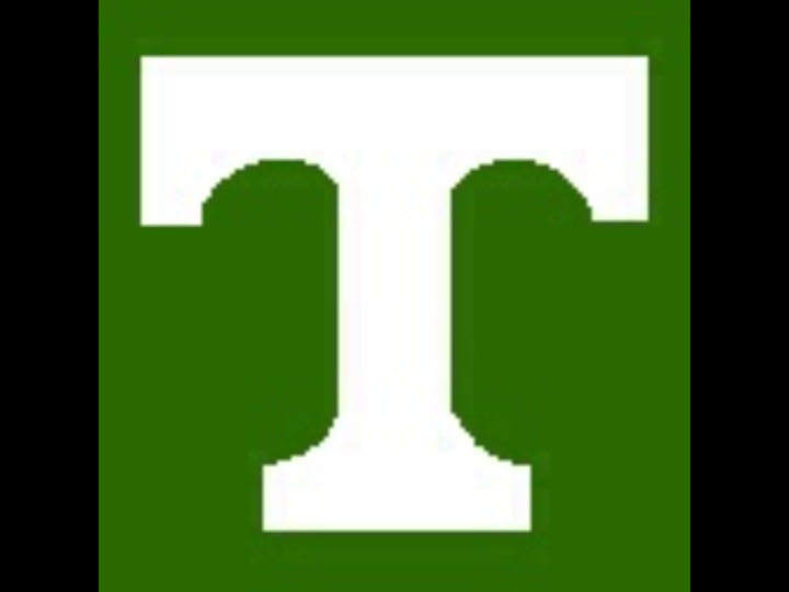 Tazewell High School mascot