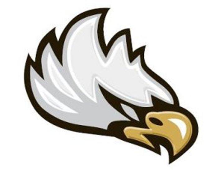 Freedom High School mascot