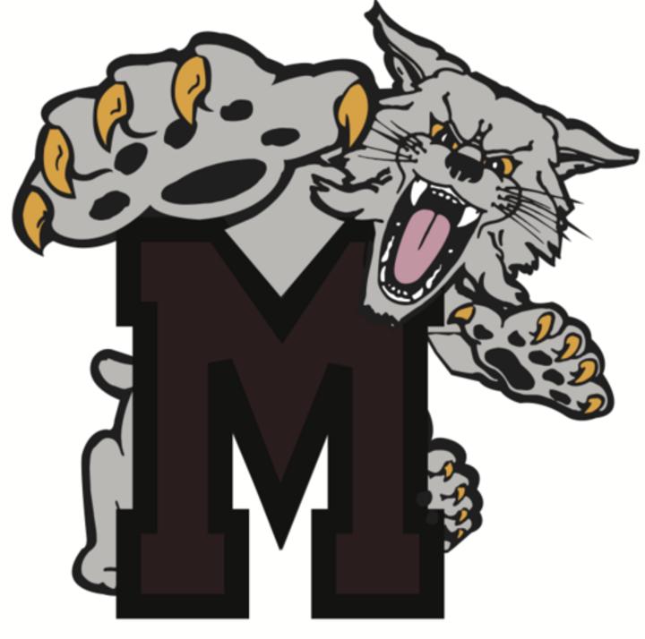 Mechanicsburg High School mascot