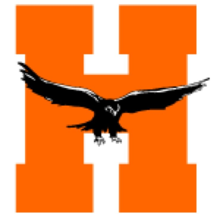 Hayfield High School mascot
