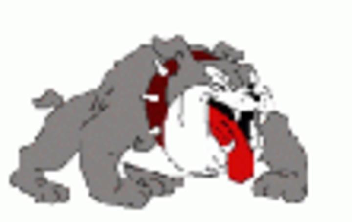 Luray High School mascot