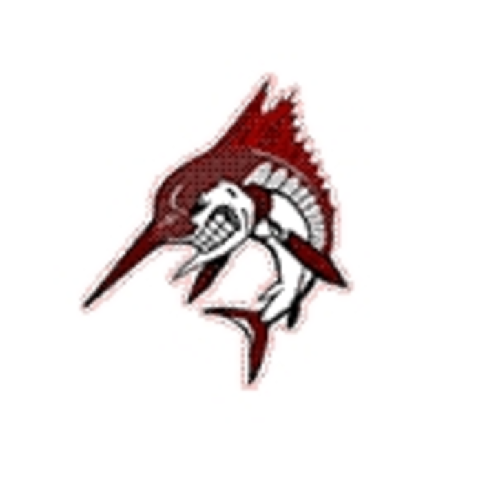Bayside High School mascot