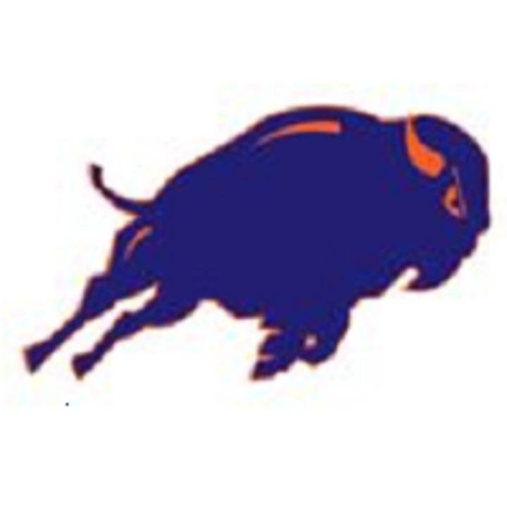 Fenton High School mascot