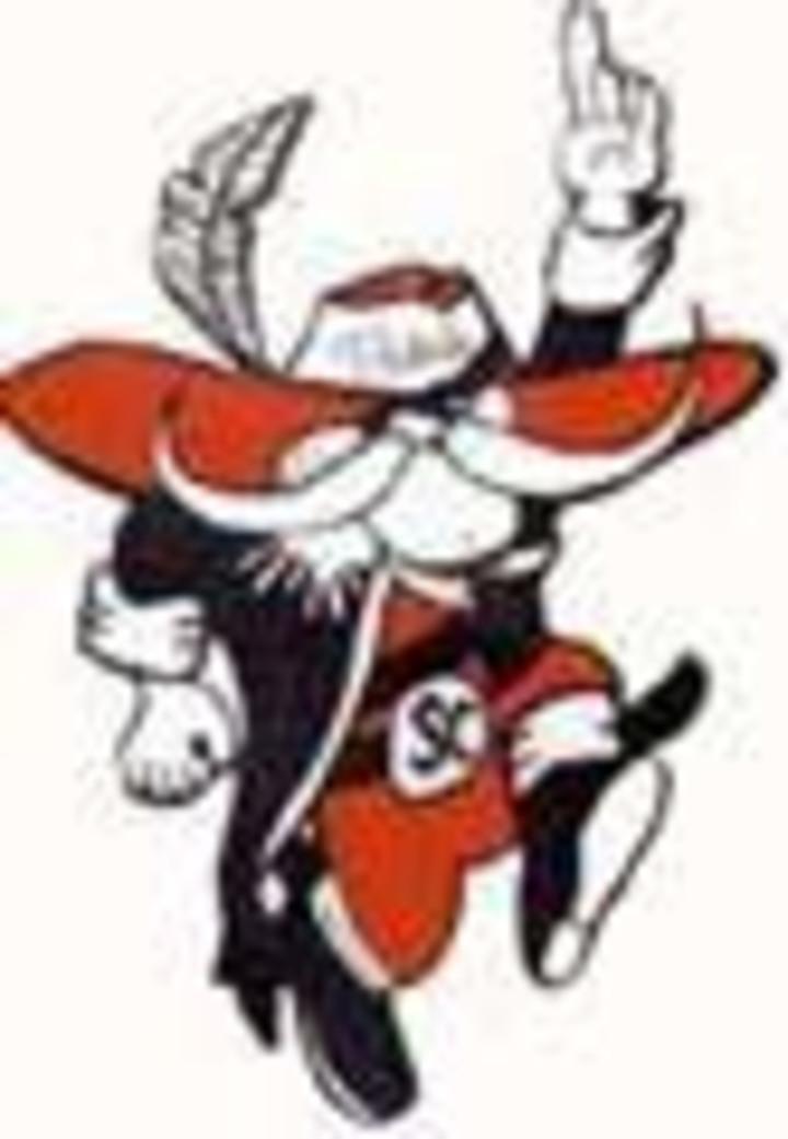 Stark County High School mascot