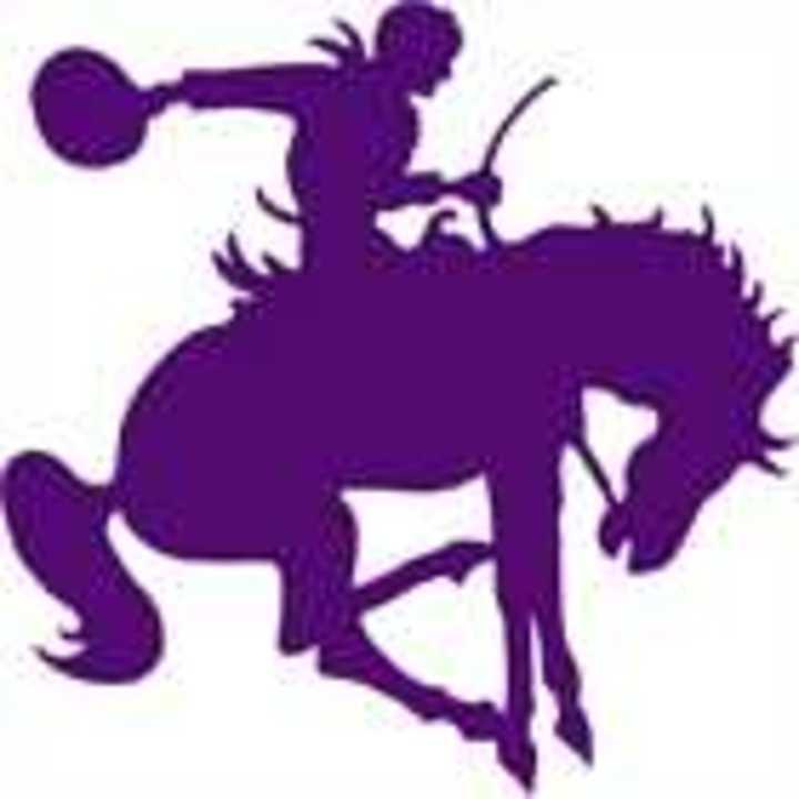 Arcola High School mascot