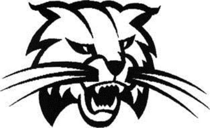 Athens Area High School mascot