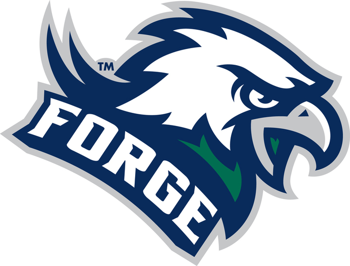 Colonial Forge High School mascot
